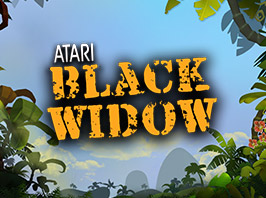 Atari Black Widow image